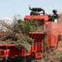 mp-2_grinding_municipal_yard_waste_compost